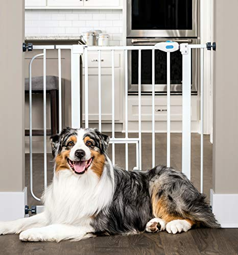Carlson Extra Wide Walk Through Pet Gate With Small Pet Door, Includes 4 Inch Extension Kit, Pressure Mount Kit And Wall Mount Kit