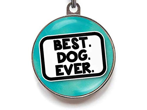 Wag A Tude Tags Best Dog Ever Funny Pet Id Tag Personalized Reverse 36 Color Options (large)