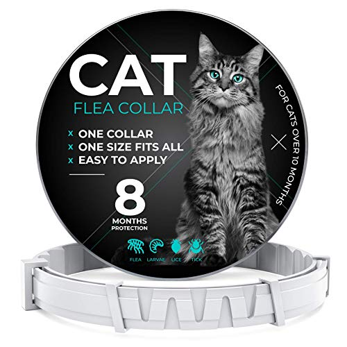 Cruzyo Flea And Tick Prevention For Cats One Size Fits All Waterproof Best Protection And Adjustable 8 Month Essential Natural Herbal Oil Gray