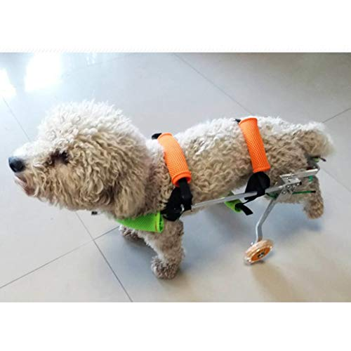 Dog Pet Wheelchair, Dog Wheelchair Back Legs Walking Frame With Wheels Best Friend Joint Aid For Dogs Cat Exercise Wheel Support Wheelchairs Dog Pet Stroller (size : M)