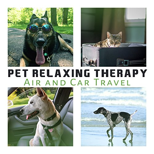 Pet Relaxing Therapy: Air And Car Travel, The Best Calming Music For Dogs & Cat Ears, Sleep Aid, Pet Relaxation