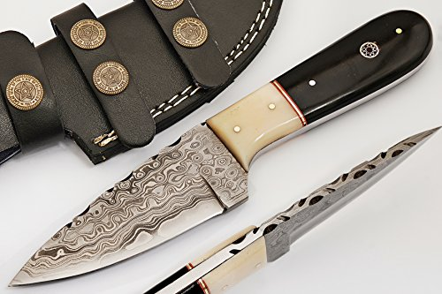 Sharpworld Beautiful Damascus Knife Made Of Remarkable Damascus Steel And Exotic Handle Best Hunting Knife With Leather Sheath Tj101 (camel Bone And Horn)