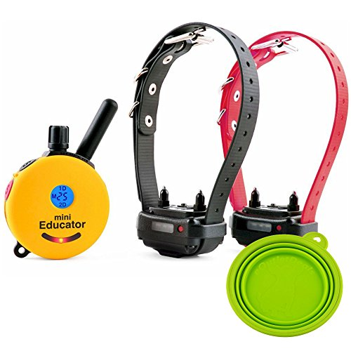Best Dog Training E Collar Educator Remote Trainer System Waterproof Vibration Tapping Sensation With Eoutletdeals Value Bundle (1/2 Mile 2 Dog W/free Eoutletdeals Pet Bowl)