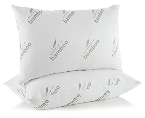 Pillows For Sleeping In Super Plush Comfort Essence Of Bamboo Derived Rayon Premium Edition Hypoallergenic Down Alternative Fiber Pillow Crafted In Usa (queen 2 Pack) Best Sleep Ever