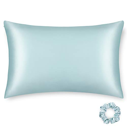Alaska Bear Silk Pillowcase Hypoallergenic For Acne Prone Skin Best 100 Percent Mulberry Silk Real Cooling Pillow Case Queen Size With Zipper (1pc, Eggshell Blue)