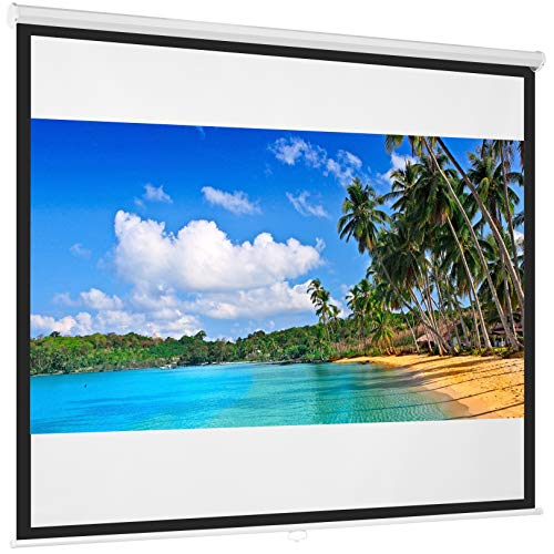 Best Home Theater Projection Screen