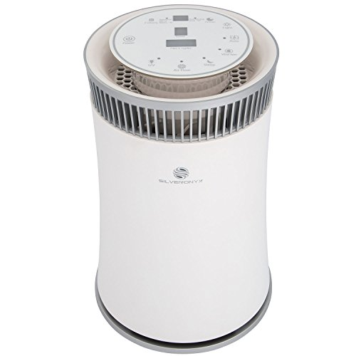 Best Home Ionizers